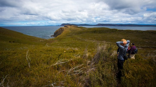 Bruny is effectively two islands, North and South, connected by a narrow isthmus called The Neck.