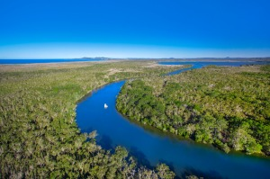 Aerial view of Noosa Everglades.