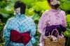 Two young ladies in festive outfits share a quiet moment by a field of water lilies. Taken in Tokyo at a floating ...