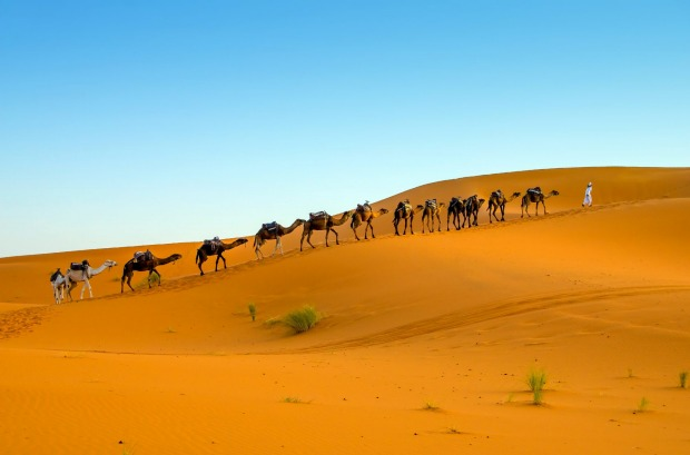 Captivating beauty of the Sahara......near Merzouga, Morocco. It was early morning, a beautiful peaceful morning. So ...