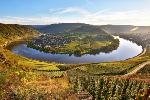 A loop of the Moselle River.