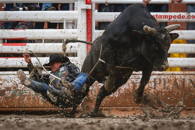 Robson Palermo, from Rio Branco, Brazil, crashes into the mud after coming off Rockaholic during bull riding at the ...