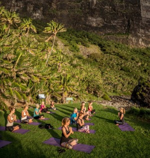 The highlight of the week is the afternoon yoga session at Little Island.