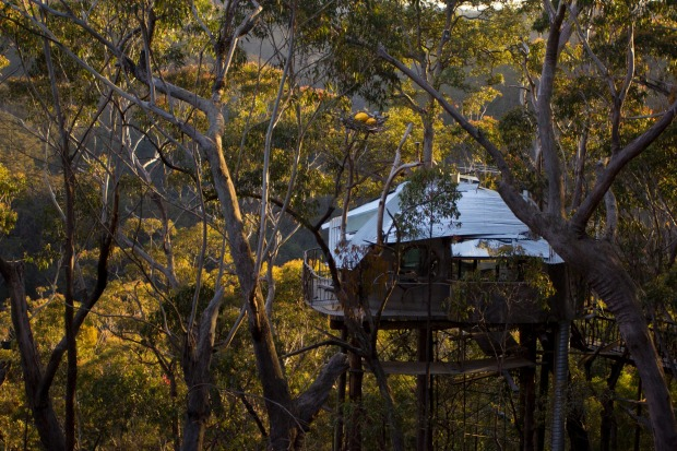 Secret Treehouse in the Wollemi Wilderness area of Bilpin, NSW. Nowhere else will you feel as immersed in nature.