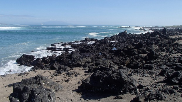 Volcanic rocks line the coasts of many of the Galapagos islands.