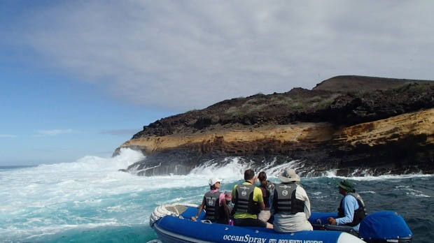 Inflatable boats take guests out from the Ocean Spray for shore excursions and explorations of the coast.