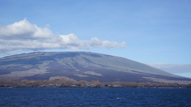 The Galapagos Islands were formed by volcanic eruptions and vary greatly in age.