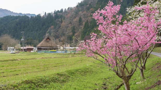 Rural landscape of Historical village Miyama in Kyoto, Japan.