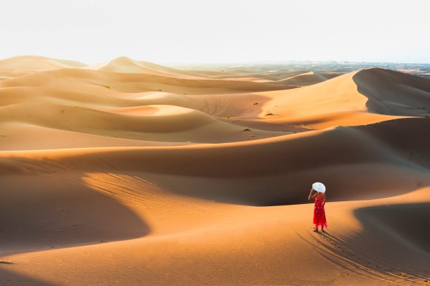 The desolate beauty of the Sahara Desert.