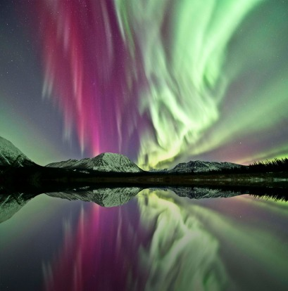 See the Aurora borealis. Each autumn when darkness once again descends on the Yukon nights, one of the world's most ...