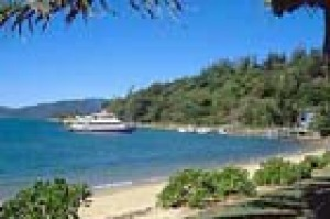 A boat arriving at the wharf in front of Daydream Island resort