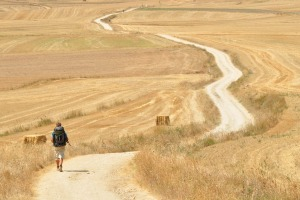 Traveller walks the Camino de Santiago de Compostela, Spain.