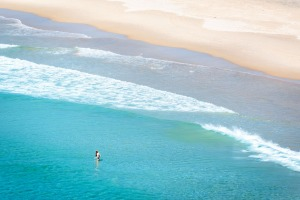 Whale Beach is a popular destination for prestige buyers.