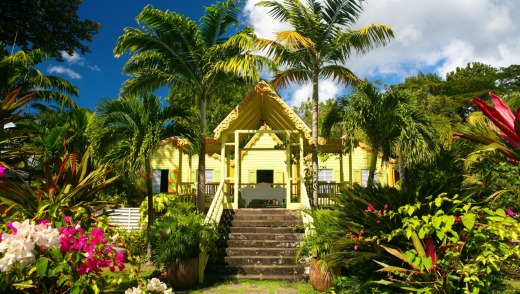 Tropical garden and plantation on St Kitts.