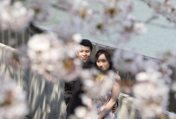 A couple enjoys the blooming cherry blossoms on the embankment along the Chidorigafuchi Imperial Palace moat in Tokyo.