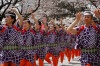 Women in traditional attire perform Japanese traditional dance during Sumida Park Cherry Blossom Festival in Tokyo. ...
