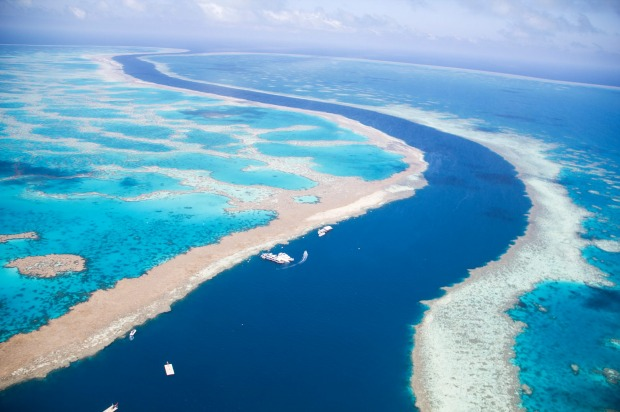Tidal channel separates Hardy and Hook Reef.