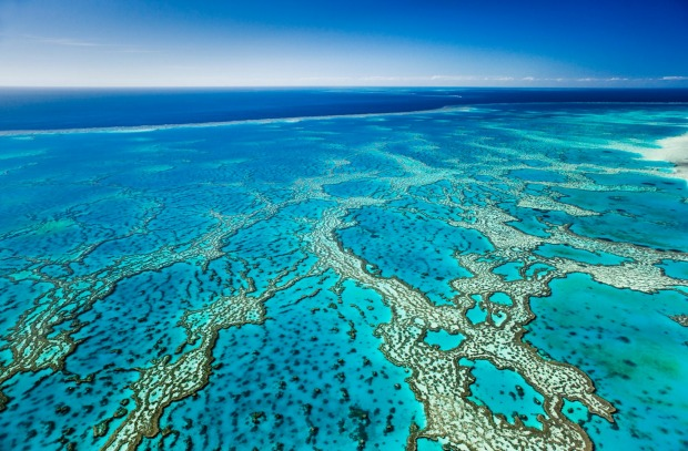 Hardy's Reef, Great Barrier Reef Marine Park, Whitsundays.