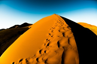 Taken in the early morning  hours while climbing Dune 45 . These amazing sand dunes change shape and colour before one's ...