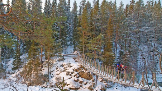 Winter hikers in Oulanka National Park.