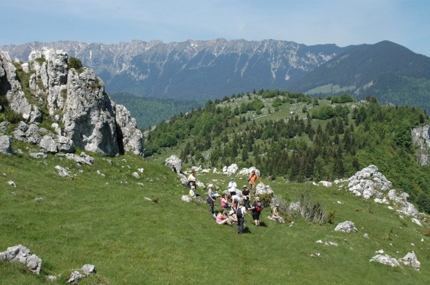 Europe's little-known wild side on display in Transylvania, Romania.