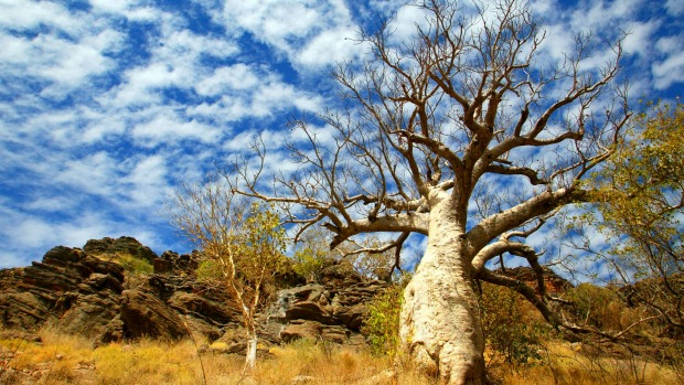The Kimberley has a rich Indigenous history, including some of the oldest rock art in the world.