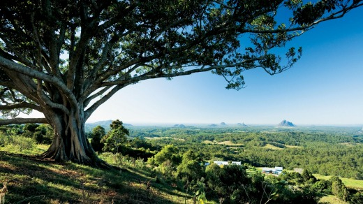 Sweeping views from Mary Cairncoss Reserve.