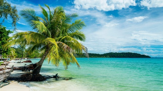 Paradise is a pristine strip of white sand, turquoise water and shading palms ... on that the experts are agreed.