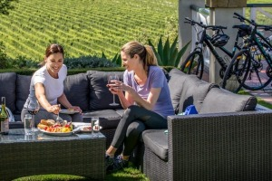 Sip and cycle: best gourmet bike rides through New Zealand. Brand Discover