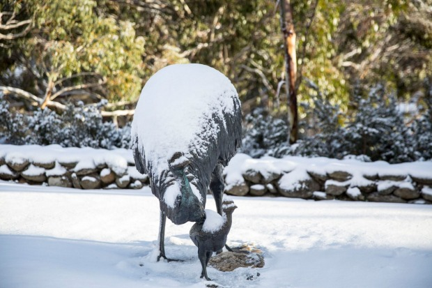 Snow covers the emus sculpture at Thredbo Ski Resort.