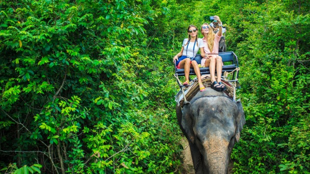 Word is beginning to spread that riding elephants is not exactly the best idea.