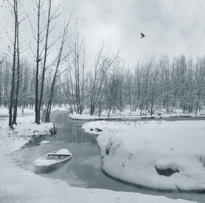 Kashmir has many picturesque lakes and mountains but to me the lakes and rivers look the most beautiful after a fresh ...