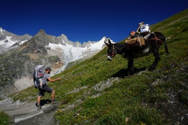 Even the mule wasn't keen on making its way down the steep, rough path of the Tour de Mont Blanc with its load.  After ...