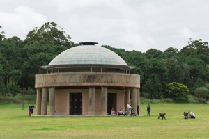 Sydney's Centennial Park. A staycation allows you to play tourist in your own city.