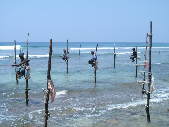 """These traditional stilt fishermen are now a tourist attraction and 1000 rupees is paid to their """"handler"""" for the ..."""