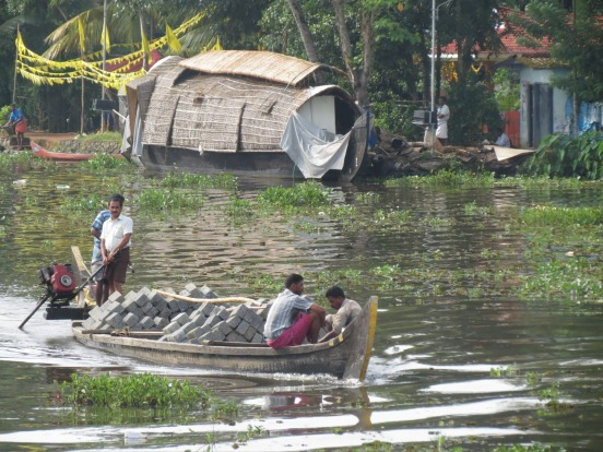 Its a highway  a bathroom swimming pool such is the life on the back waters of Kerla  India