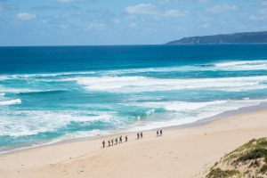 The trail on the 12 Apostles Lodge Walk includes beaches as well as bush.