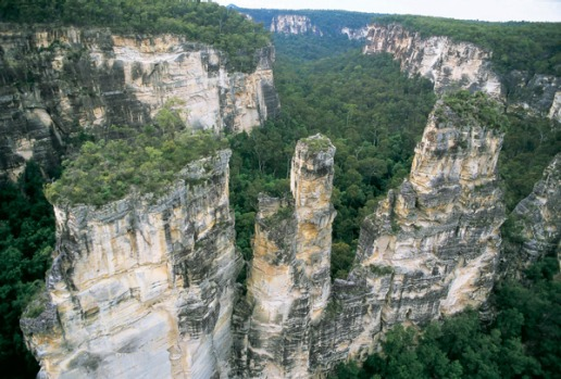 Carnarvon Gorge, Queensland. A steep-sided canyon of towering white-sandstone cliffs with lush side gorges full of hanging gardens of mosses and ferns, icy swimming holes and sinuously curved ravines.