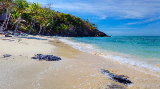 Turtle Island Fiji Why This Tropical Island Paradise Is One Of The