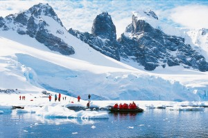 The cruise to Antarctica provided so many extraordinary moments.