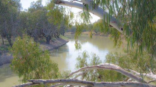 The Darling River, near Bourke.