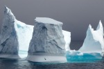 "We sailed through the Willis Islands, west of South Georgia, with a breath-taking iceberg (an icy ''Stonehenge"") ..."