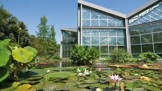 Greenhouses and lily ponds in Frankfurt's Palmengarten.
