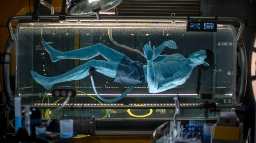 The journey begins in the queue, as guests get a peek inside a high-tech research lab to view an avatar still in its ...