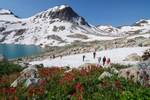CMH hikers cross a patch of snow high in the Bugaboos.