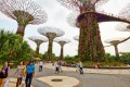 Singapore's Gardens by the Bay is a must-see when visiting the city.