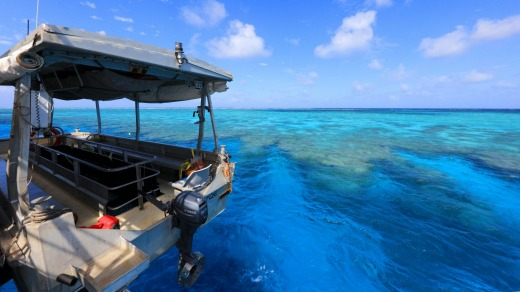 The majesty of the Great Barrier Reef has to be seen to be believed.
