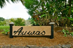 Auwas Island Holiday Home.