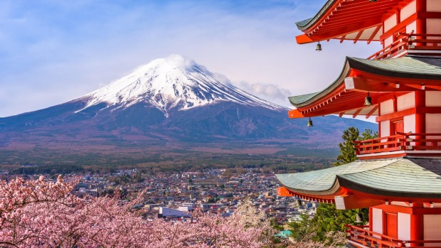 View of Chureito Pagoda and Mt. Fuji during spring (cherry blossom season).