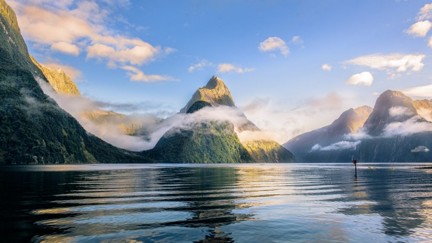 swimming in new zealand s glacial milford sound